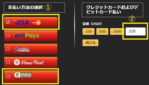 エンパイアカジノのクレジットカード入金金額画面