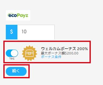 ecoPayz入金画面1